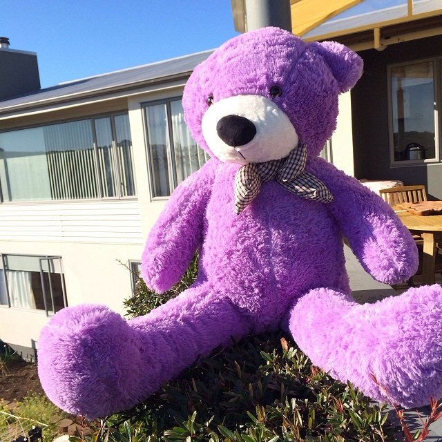 Giant Teddy Bear 1.2m -- pruple