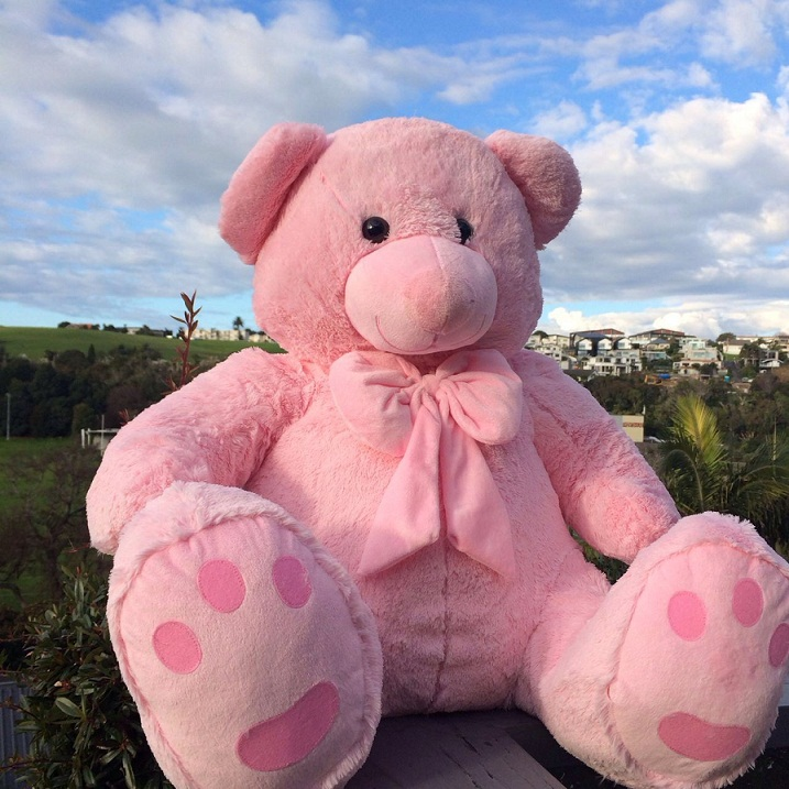 Roly Bear 90CM--Pink
