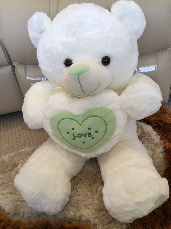 TEDDY WITH HEART 60CM-green heart