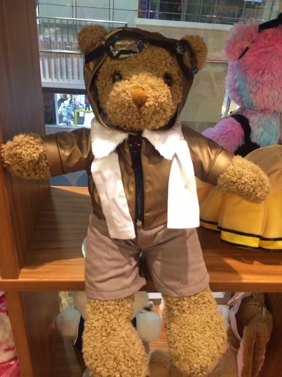 Bear Dressed Up